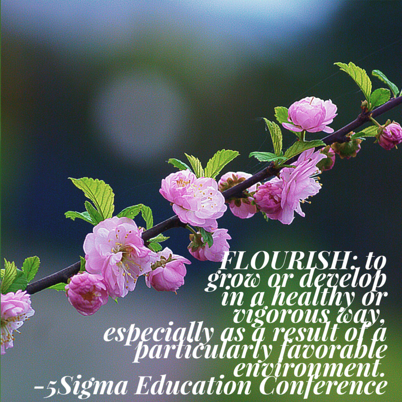 Flourish at the 5Sigma Education Conference